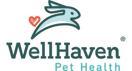 WellHaven Pet Health Bloomington