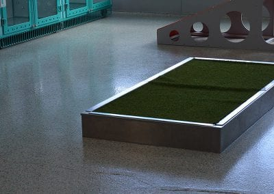 WellHaven Pet Health Bloomington Pet boarding play area