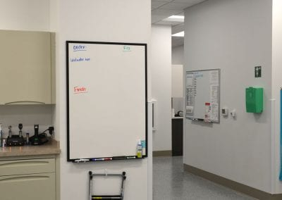 Veterinary Staff room at WellHaven Pet Health Bloomington, MN